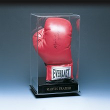 Boxing glove case