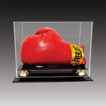 Boxing glove cases